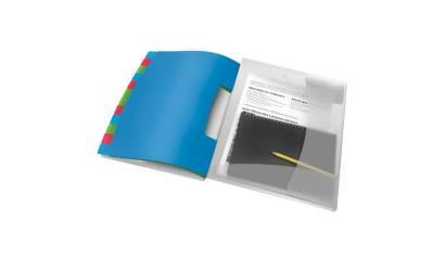 Teczka segregująca PP ESSELTE VIVIDA A4 12 przekładek 624030