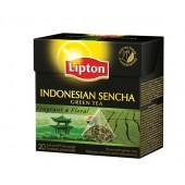 Herbata LIPTON - Piramidki Green Tea Indonesian Sencha (20szt)