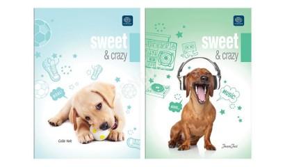 Dzienniczek ucznia INTERDRUK A6/16k. krat twarda oprawa nr 305 Sweet & Crazy