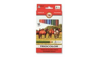 Kredki ołówkowe KOH-I-NOOR TRIOCOLOR 12kol. 3142