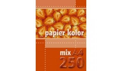Papier xero A4/80g KRESKA mix kolor (250ark.)