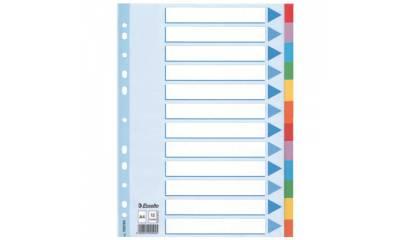 Przekładki kartonowe ESSELTE A4 12 kart w 5 kolorach 100194
