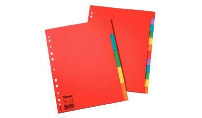 Przekładki kartonowe bez karty opisowej ESSELTE A4 10 kart w 5 kolorach 100201