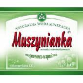 Woda mineralna Muszynianka 0.6l wysokomineralizowana (8szt) (zielone etykiety)